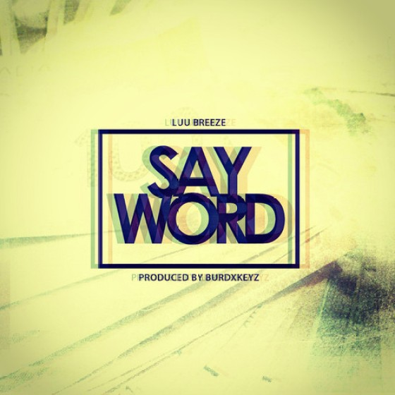 Luu Breeze 'Say Word'
