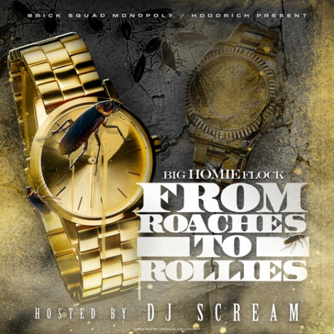 Waka Flocka 'From Roaches To Rollies'