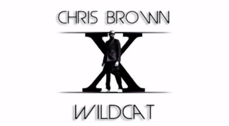 Chris Brown 'Wildcat'